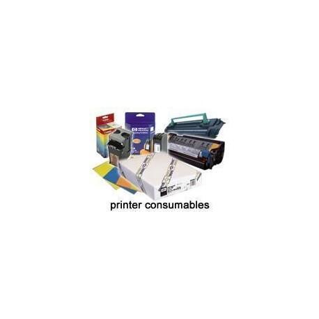 Epson Rollo de Premium Glossy Photo Paper, 44'' x 30,5 m, 260 g/m² C13S041640