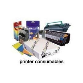 Epson Rollo de Enhanced Synthetic Paper, 44'' x 40 m, 77 g/m² C13S041616