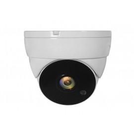 LevelOne ACS-5302 Cámara de seguridad CCTV Interior y exterior Almohadilla Techo - 57306907
