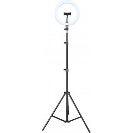 iggual Kit Anillo luz LED 10'' + Trípode 200 cm - IGG317242+IGG317235