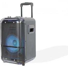 Denver TSP-306 altavoz para sistema de megafonía